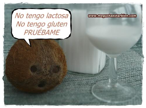 Leche de coco SIN LACTOSA sin gluten