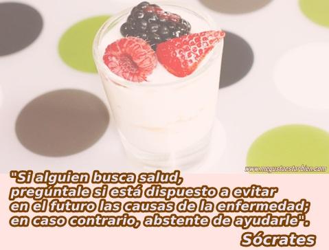 yogurt socrates