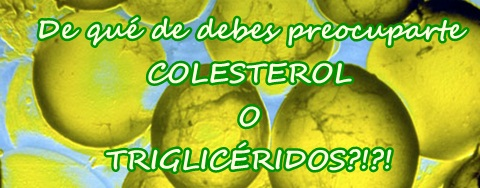 Colesterol o trigliceridos