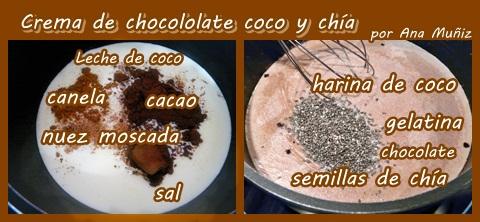 receta crema de chocolate coco y chía