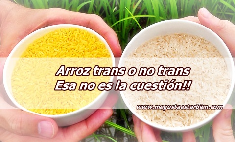 arroz transgenico