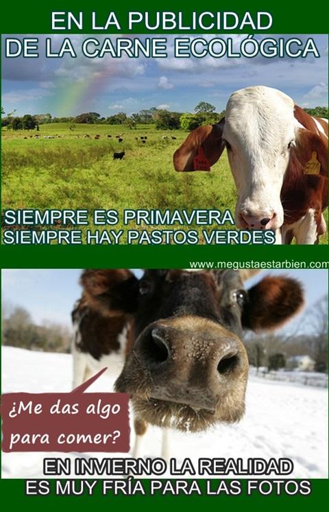 carne ecologica de pastos