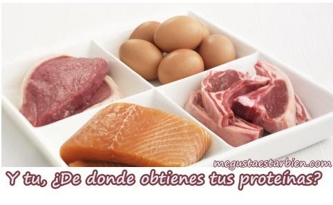 proteínas rápidas o lentas