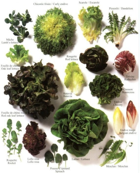 verde para las ensaladas