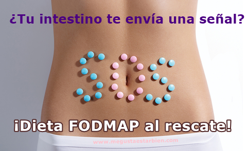 sos intestino fodmap
