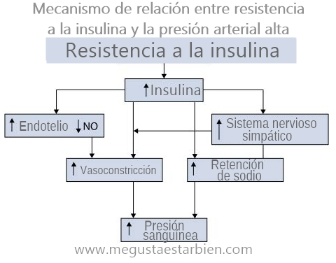 insulina e hipertension