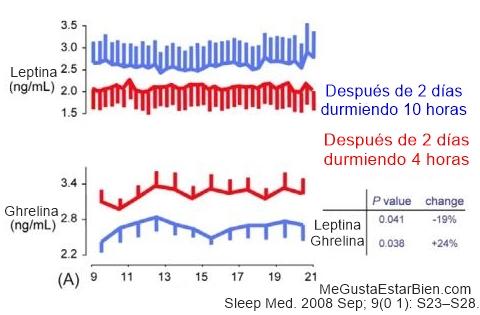 niveles de leptina y hambre1