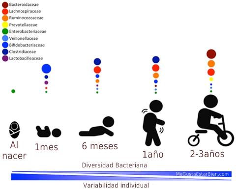 microbiota infantil