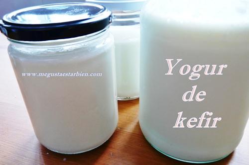 Yogur de kefir como se hace