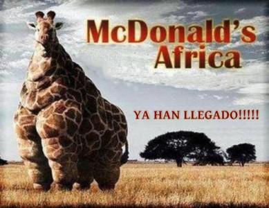McDonaldsAfrica