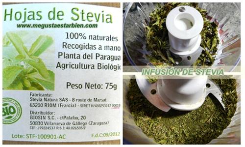 RECETA INFUSION DE STEVIA