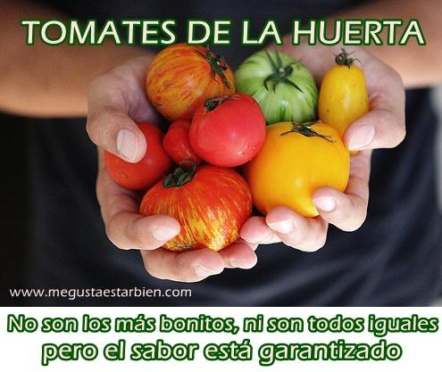 tomates de la huerta etileno sabor