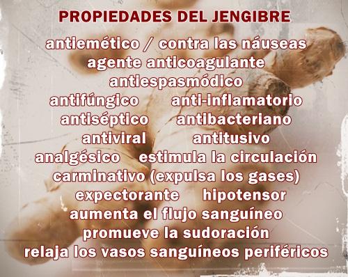 PROPIEDADES DEL JENGIBRE