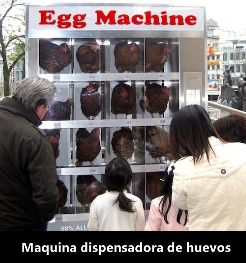 maquina dispensadora de huevos
