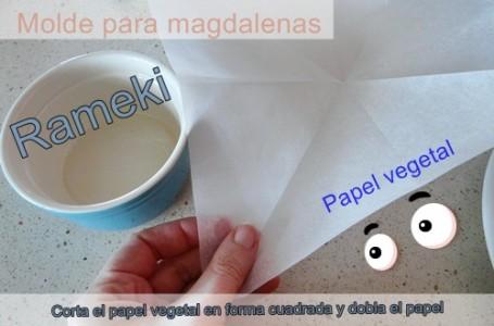 Molde papel magdalenas 1