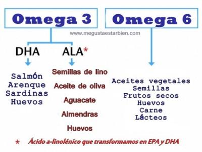acidos grasos esquema