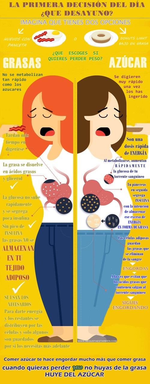 que engorda grasa o hidratos