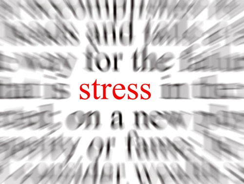 estres cortisol y salud