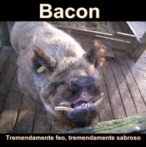 bacon feo
