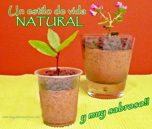 estilo de vida natural