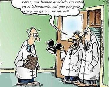 humanos y ratas de laboratorio
