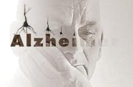 alzheimer y diabetes