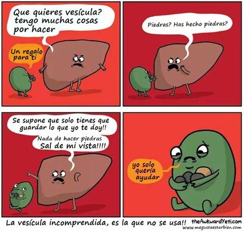 Problemas de vesicula dieta