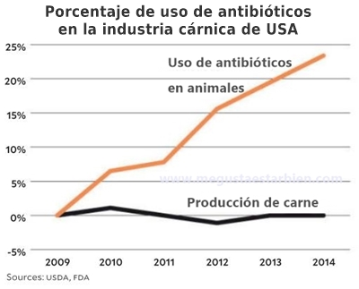 antibioticos en la carne