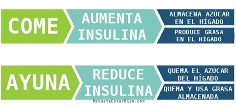 el ayuno reduce la insulina